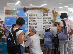 様々な団体のパネル展示を通してエコのヒントが見つけられたかな。