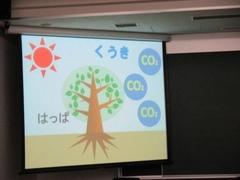 木はくうき中のCO2を食べてくれます